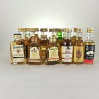 Minis Assortment Blends 30 x 5cl including Bells & Famous Grouse